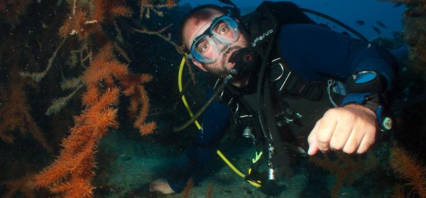 Sacha con coral canario en Teno