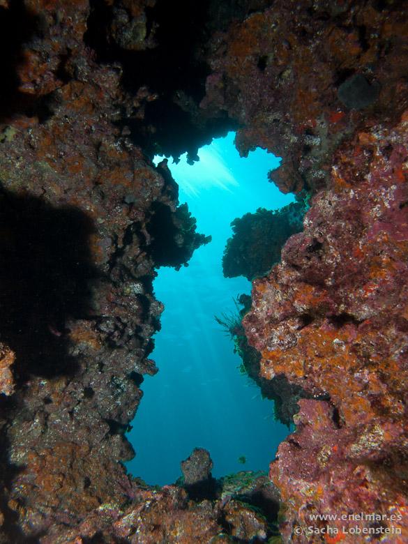 20110219 1228 - Punta Restinga-2