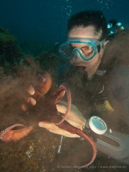 20110529 1219 - Adrián, Pulpo (Octopus vulgaris), Teno