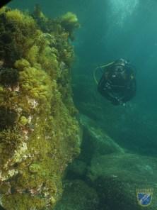 XV Copa Cabildo de Fotografía Submarina 2012 - AC - Ambiente con modelo - Francisco Javier Martín Rodríguez