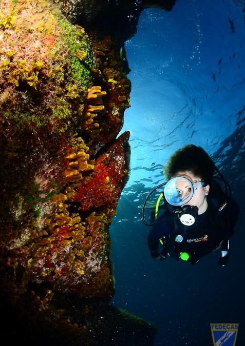 Publicada la clasificación de la 2ª prueba de la XV Copa Cabildo de Fotografía Submarina 2012 (El Porís)