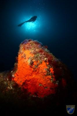XV Copa Cabildo de Fotografía Submarina 2012 - AC - Ambiente con modelo, Jesús Yeray Delgado Dorta