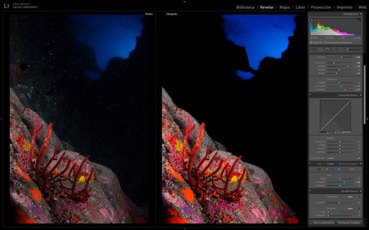 Retoque con Adobe Lightroom de una gorgonia roja en Garachico