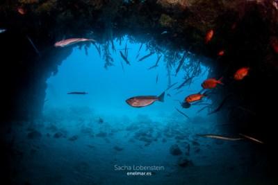 20160305-1633-SachaLobenstein-enelmar.es-Tres grutas