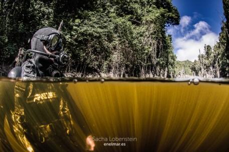 20161009-1314-sacha-lobenstein-enelmar-es-presa-de-meriga