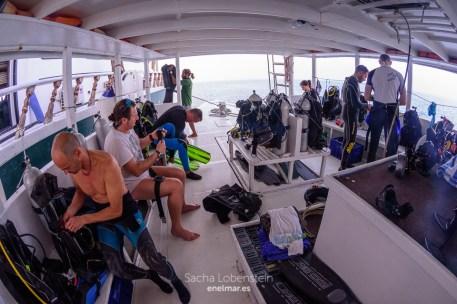 20170129-0824 - Sacha Lobenstein - enelmar.es - Moofushi Reef