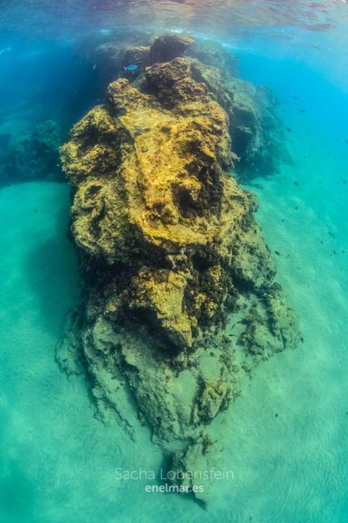 20170626-1120-SachaLobenstein-enelmar.es-Playa Chica < Puerto del Carmen
