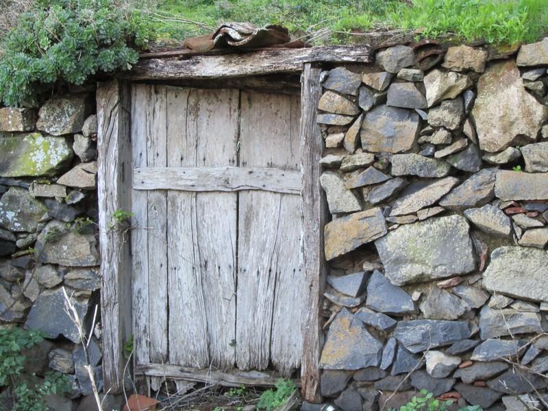 Dörr på La Gomera