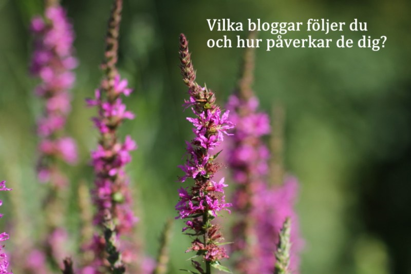 bloggpåverkan bild på blomma och text