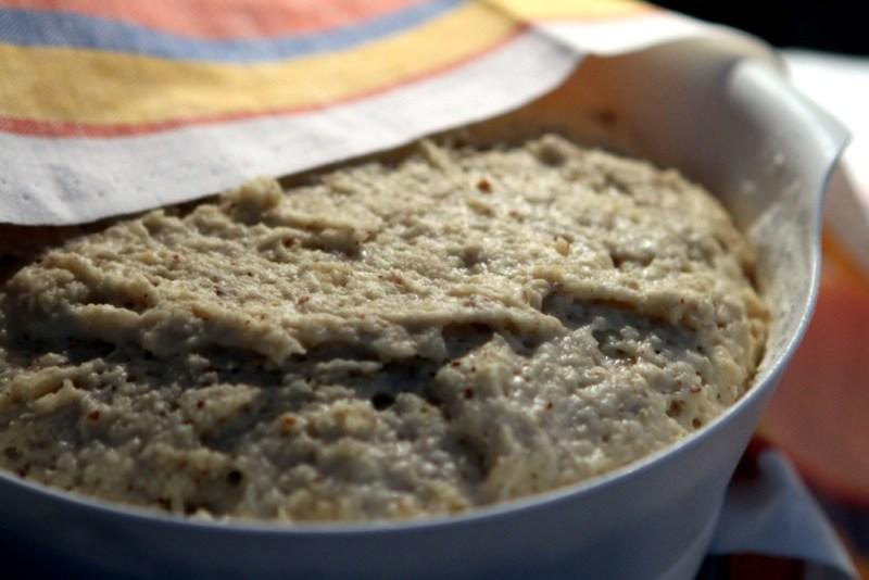 en god glutenfri semla - jäsning