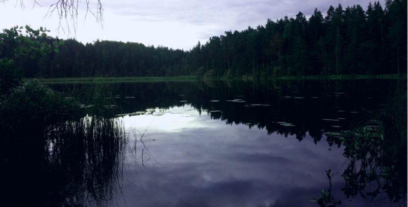 SJö i Tyresta Vatten