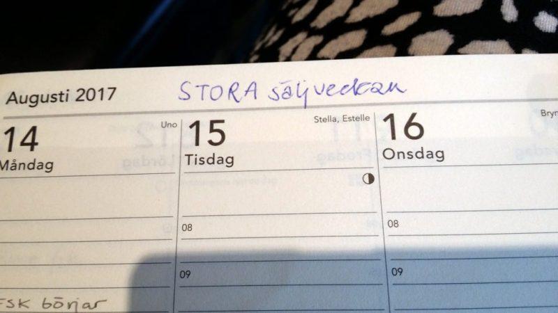 egenföretagare 1 bild på kalender
