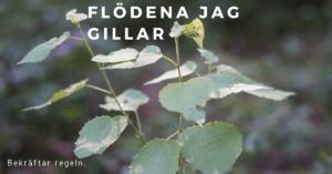 slow living svensk blogg