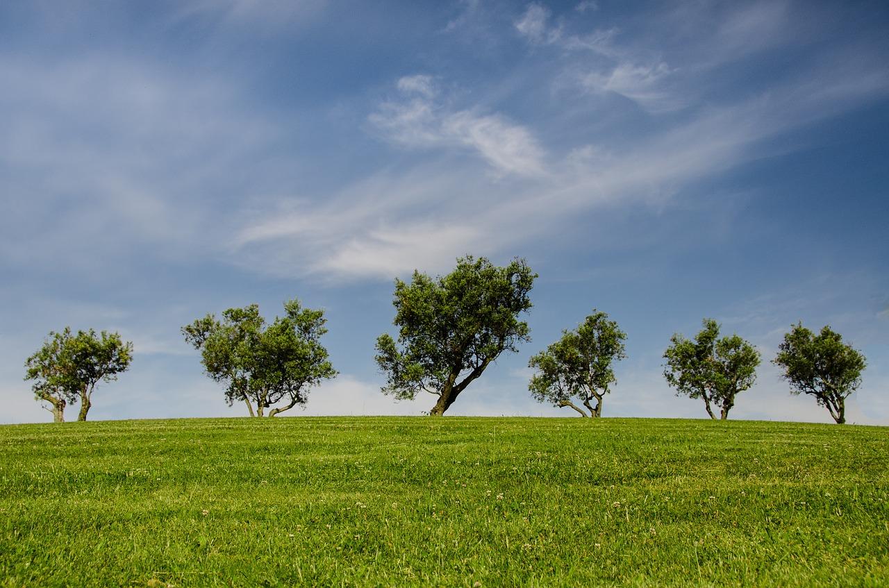 La nuova normativa ambientale – Convegno a Valmontone