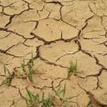 crisi idrica
