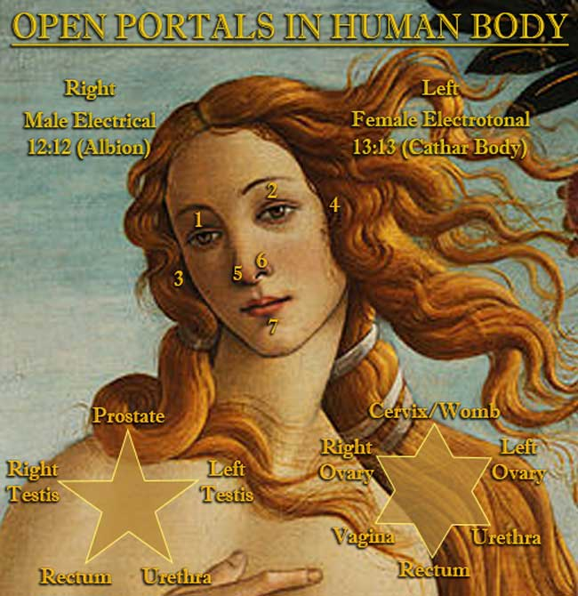 Open Portals in the Human Body