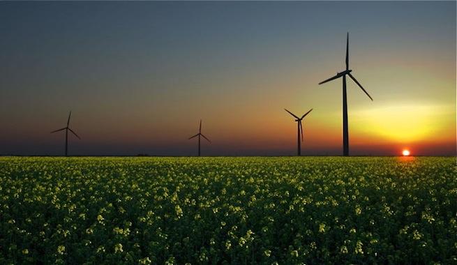 Menos carbón y más renovables reducen las emisiones de CO2 en Estados Unidos