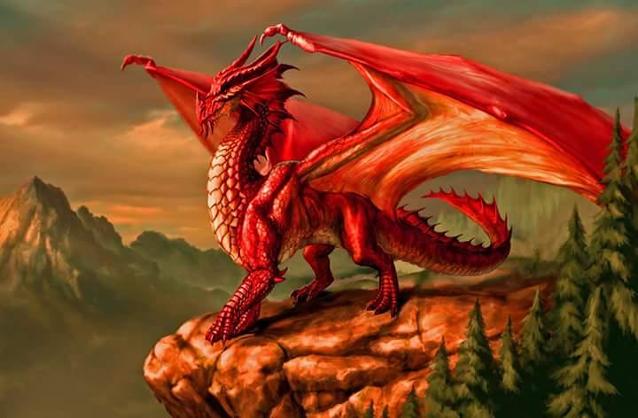 Nuevo comienzo en espiral* Dragón Magnético Rojo – kin 1 *