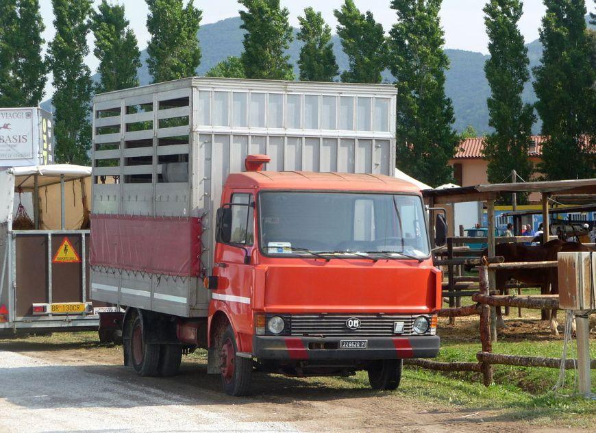 camion peugeot