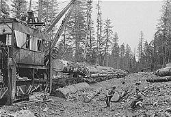 débardage tracteur forestier