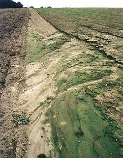 engrais agricole