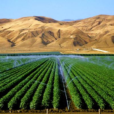 installation irrigation agricole