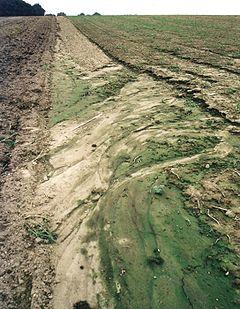 pompe agricole irrigation et raccordement