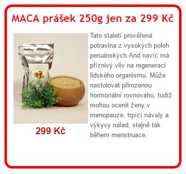 maca 250 - V Rusku se našel 250 milionů let starý mikročip