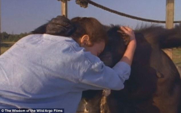 ch04 - Šimpanzi poznali svou pečovatelku po 25 letech