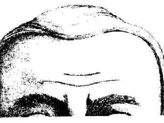 1efb93515360961862467d5ba0157841 - Pět nejčastějších tvarů čela odkrývá osobnost - 1