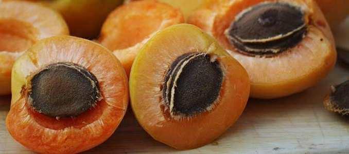 Meruňkový olej je blahodárný.
