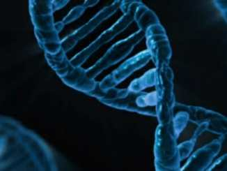 fa8c7f676a6d2a659f4844109084ddcd - Krevní skupina Rh– a naše mimozemská DNA