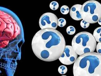 Demence se rozvíjí již od středního věku.