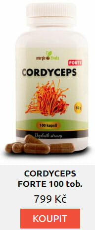 CORDYCEPS FORTE 100 tob.