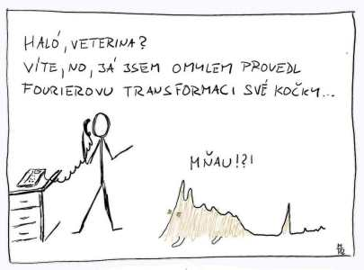 Fourierova transformace kočky.