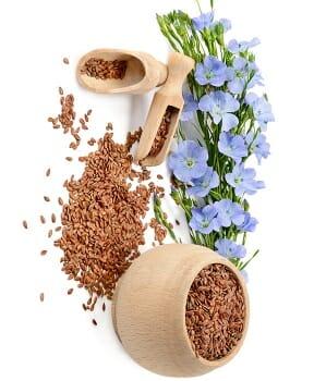 lnene seminko 1kg - Peruánské byliny předávají sílu a navrací zdraví
