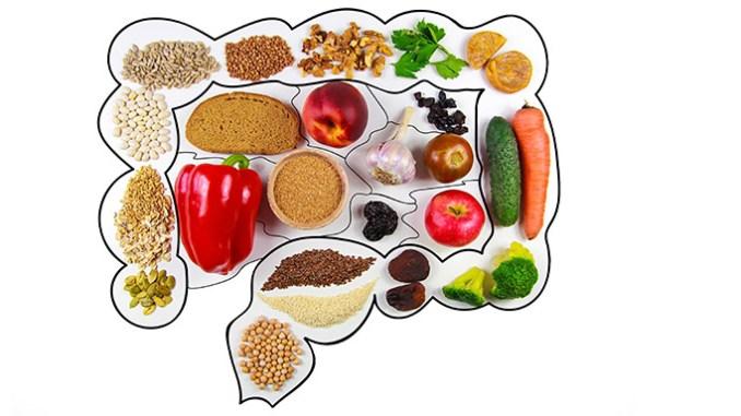 Trávení lidského těla nepotřebuje stravu dělit.