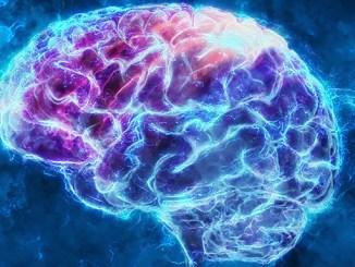 Mozek uchovává jakoukoli informaci, i když ji zapomenete.