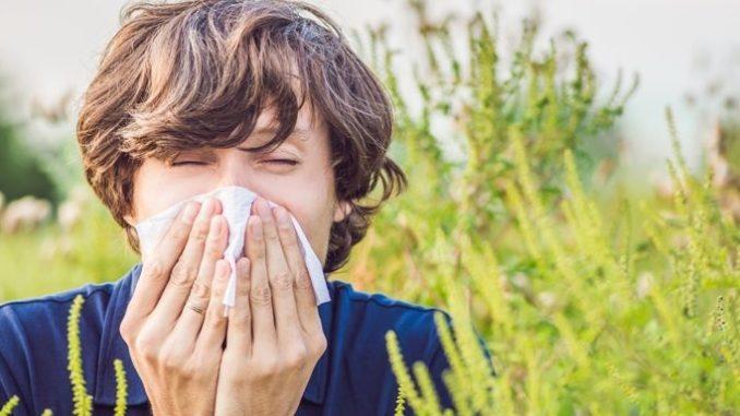 Alergie na pyl se zmírní díky našim radám.
