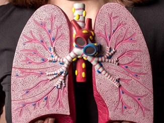 Plíce je nutné posilovat, poradíme jak.
