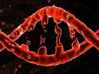 Oprava DNA pomocí monoatomického zlata.