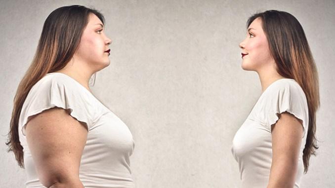Jídlo, obezita a rakovina spolu souvisí, potvrzují vědci.