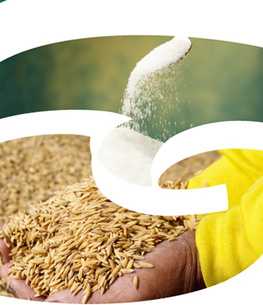 export intermediaries for sanitarium health food company marketing essay The trademark is owned by the australian health & nutrition association ltd's sanitarium health food company  granola, health food  marketing claims has been .
