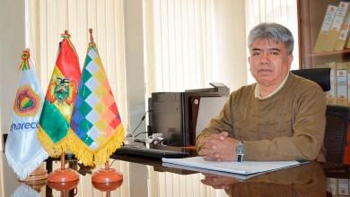 Photo of Senarecom: Bolivia capta Bs 587,9 millones por regalías mineras al primer semestre