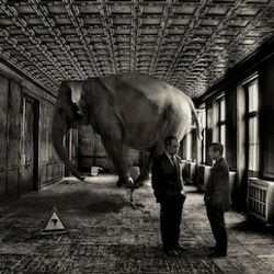 Elephant Room Hvac High Performance Home David Butler Small