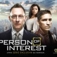 person of interest art