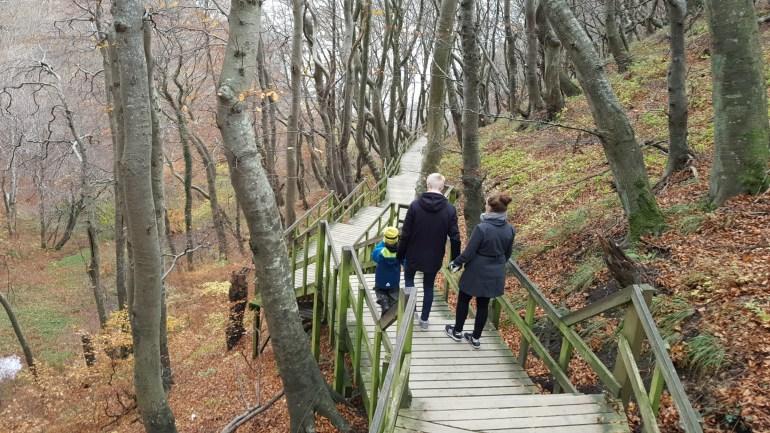 Danmarks længste trappe på Møns Klint