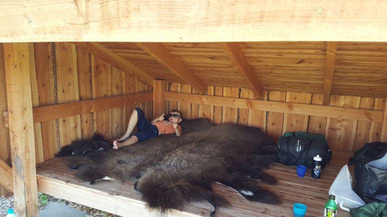 Bison_Farm_Shelter