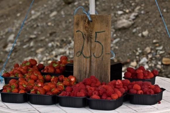 framboise et fraise en norvège