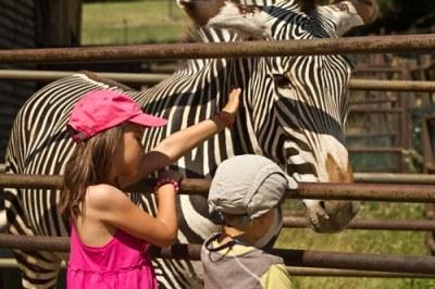 zèbre-et-enfants-au-zoo-de-Bratislava
